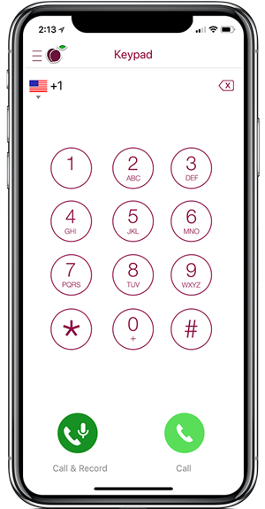 Text Enable Your Phone Number | iPlum